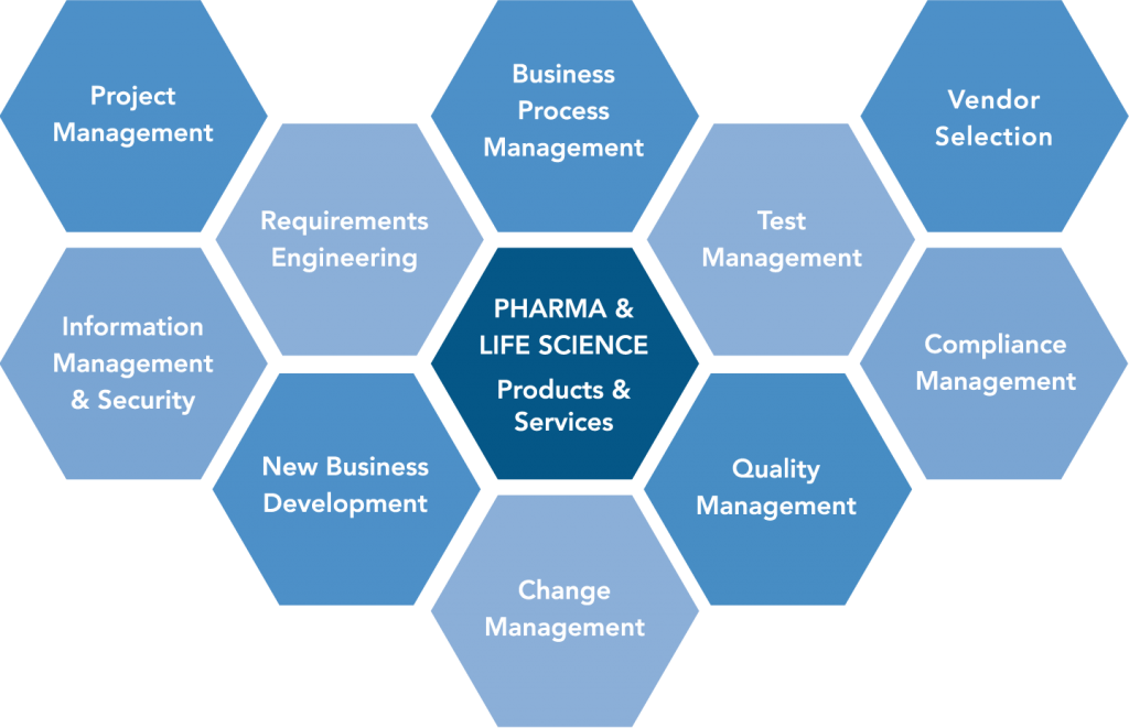 Project Management, Requirements Engineering, Vendor Selection, 	Business Process Management, 	Test Management, Change Management, Compliance Management, Quality Management, New Business Development, Information Management & Security