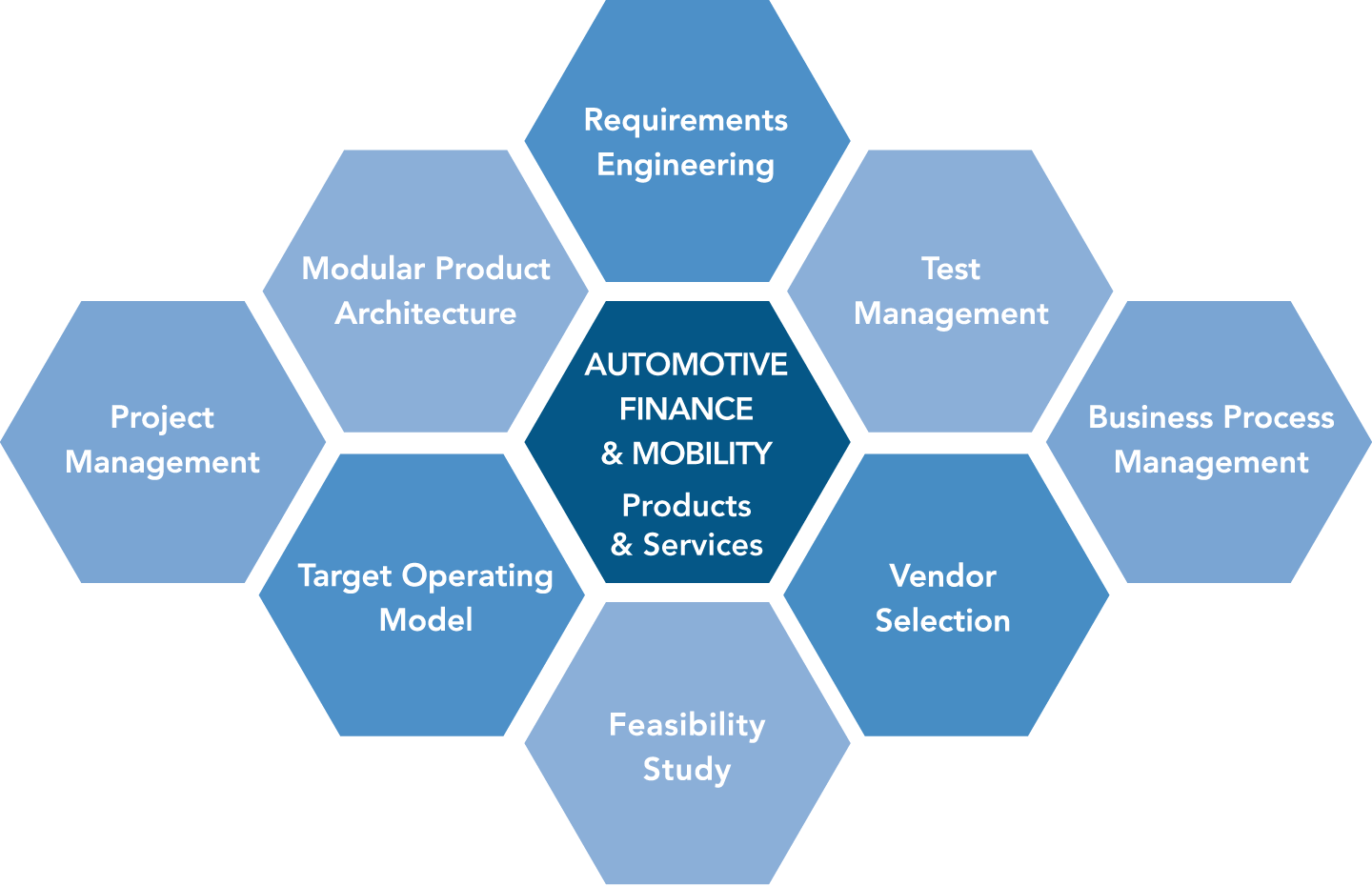 Requirements Engineering, Test Management, Business Process Management, Vendor Selection, Feasibility Study, Target Operating Model, Project Management, Modular Product Architecture